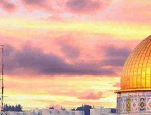 Paket Tour Aqsa Mesir Petra 2019