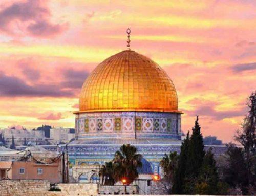 Paket Tour Aqso 2019